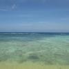 【リベンジ】三度目の沖縄本島北部
