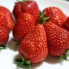 スーパーで甘いイチゴの見分け方&意外にすごいイチゴの栄養