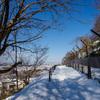 多摩動物園裏を歩く「かたらいの路」で多摩丘陵のスノーハイクを楽しむ