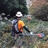 恒例のトレイル整備(草刈り)