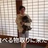 2021.5.22 【スマブラ‼️アイアンマンチャレンジ】 Uno1ワンチャンネル宇野樹より