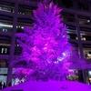 2017東京駅丸の内にクリスマスツリーを見に行ったよ!ライティングショーがおすすめ!いろんなツリーを見て回ろう!キッテ・丸ビル・新丸ビル・オアゾ