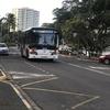 ニュカレドニア最終日!バスに乗ってヌメア市街地へ