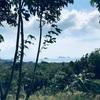 パンガン島でのアシュラムライフ