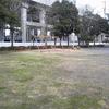 ニュースで昨日から連呼されている「日本海側は寒波による大雪に注意」…現在の雪の状況…新潟市中央区笹口3丁目公園