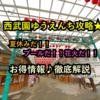 西武園ゆうえんち攻略★夏休み♪プール・花火・ショーイベント徹底解説!!