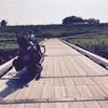 埼玉県にある木製の橋へ  ~そして入院と試乗~