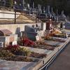 霊園風景 その22 「‥‥ 花壇墓たちの 春待つ光景」