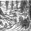 第6章  地元と国有林 第31話「なめこ栽培」