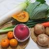 野菜いろいろ ① F1野菜と在来種野菜