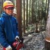 結局、高知の森に生きることになりましたー「木こり」という選択