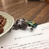 第2回ミーティング 〜パンフレット作成すんの会〜