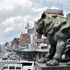 【一日一枚写真】祇園を見守る狛犬【一眼レフ】