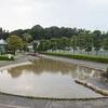 水とスポーツ公園 安心の水遊び場