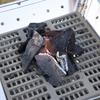 焚き火台・ファイアグリルを実使用比較。ユニフレームとスノーピークどちらを選ぶ?