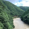 【鉄道写真】嵯峨野観光鉄道トロッコ列車