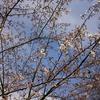 4月の鈴木藤助日記を読む会