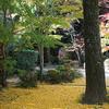 新神戸駅近くにある紅葉が美しい禅寺 徳光院
