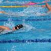 平泳ぎとクロール