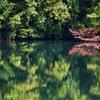 落口の池(青森県深浦)