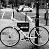 自転車の置き場所にマジで困ってる。