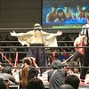 DDT Special 2017