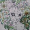 無印色鉛筆で混色を楽しみながらお花部分を塗ってみました☆おとニャーの塗り絵ノートより