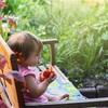 7月の家庭菜園 トマト嫌いの子供でも食べられるミニフルーツトマト?