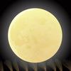 うさぎと言えばお月様!中秋の名月とは?今年の中秋の名月は9月13日(金)です!