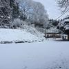 栃木で有機農業学び始めた