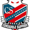 Salaries of J.League Consadole Sapporo Players in 2019