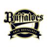 【2021】オリックス・バッファローズ 選手使用メーカー一覧(グラブ、グローブ、バット、スパイク、道具) プロ野球パ・リーグ