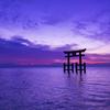 2020年に参りたい☆神社仏閣パワースポット【関西】