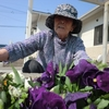 小規模多機能型居宅介護事業所 花しのぶ 平成30年5月ブログ