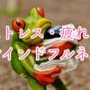 【マインドフルネス】ストレスや疲れにスキマ時間で出来る簡単な対処法!!