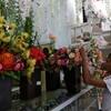 Warung Bunga Mercedes Maidana Di Indonesia Yang Harganya Terjangkau