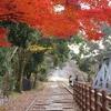 晩秋の京都・奈良 ①蹴上インクライン
