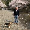 SSK (Sunny-Side of Kyoto)(+377/742)