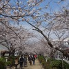Rans Kamakura@鎌倉 ランチ Pranzo A