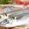 向山雄治の秋は魚が美味しい季節!おすすめの魚3選!!