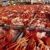 食い道楽ぜよニッポン❣️ 鳥取境港 旬の漁師料理 和泉❗️