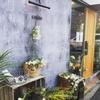 西荻窪の乾燥植物店 cotico と Blue Water Flowers