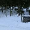 厳冬期の平標山リベンジ