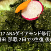 【2017 ANAダイヤモンド修行記】羽田ー那覇 2日で3往復 後編