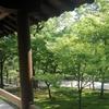 東福寺の新緑