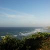 【沖縄県産コーヒー】大宜味村でコーヒーを勉強してきました その3