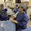 他人のiPS細胞で初の移植…目の難病患者に