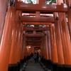 あけおめ登山 一発目は軽く…初詣ついでに京都一周トレイルを歩く。