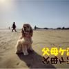【わんこと旅】父母ヶ浜(香川県)!日本のウユニ塩湖!!