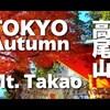 高尾山の紅葉の現在の状況をライブカメラでチェック